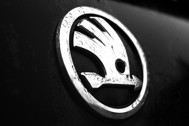mokré logo Škoda